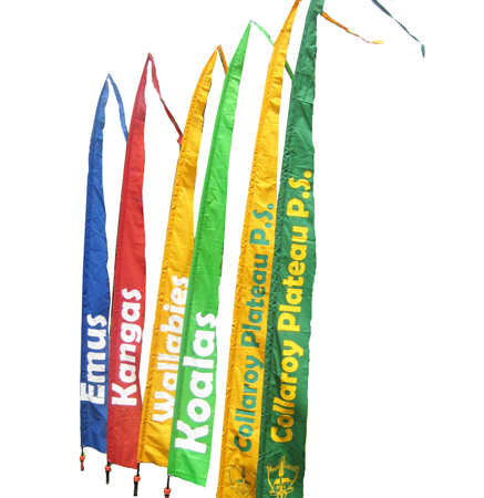 PROMOTIONALSCHOOLFLAGS2